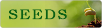 National Initiative for Information on Quality Seeds (Seednet India Portal)